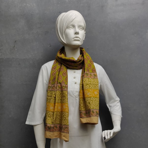 Handblock Printed Multi Colour Stole WST43